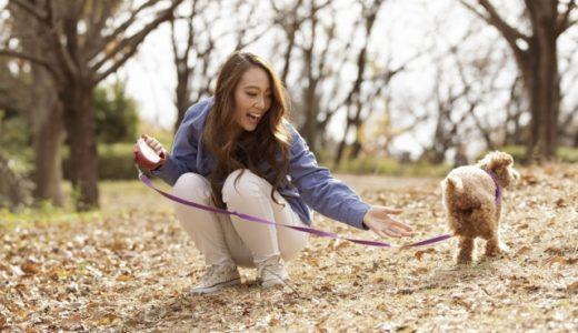 もし海外移住をしたら…愛犬を守るために