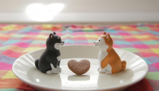 犬の恋愛について