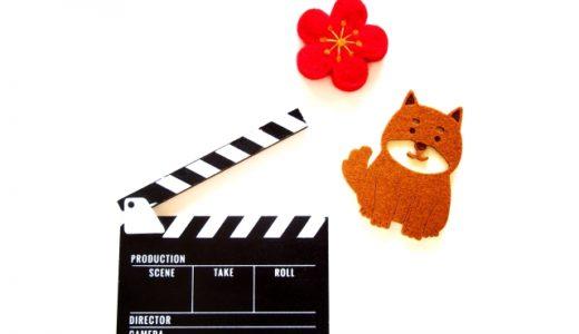 犬が出てくる映画で好きな犬は?